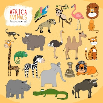 Ensemble d'illustrations dessinées à la main d'animaux d'afrique