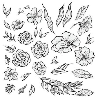 Ensemble d'illustrations de fleurs dessinée à la main