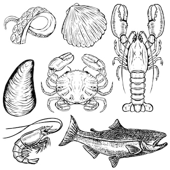 Ensemble d'illustrations de fruits de mer dessinés à la main. éléments pour affiche, menu. huître, crabe, crevette, saumon, homard. illustration