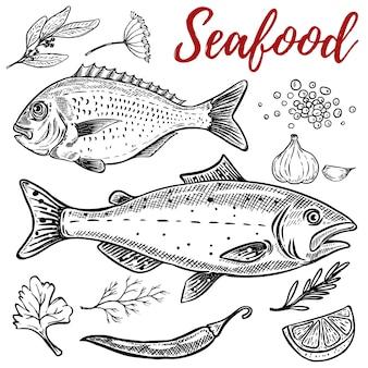 Ensemble d'illustrations de fruits de mer dessinés à la main sur fond blanc. éléments pour affiche, emblème, menu du restaurant. illustration