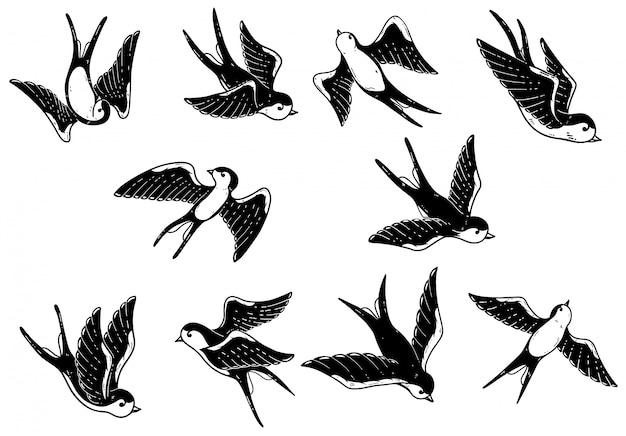 Ensemble d'illustrations d'hirondelle dessinés à la main sur fond blanc. éléments pour affiche, carte. image