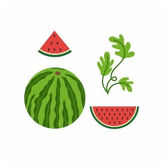 Ensemble d'illustrations tranche de pastèque de pastèque et branche verte