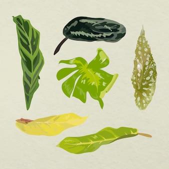 Ensemble d'images d'art vectoriel de feuilles tropicales