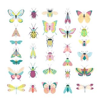 Ensemble d'insectes - coléoptères, papillons, mites