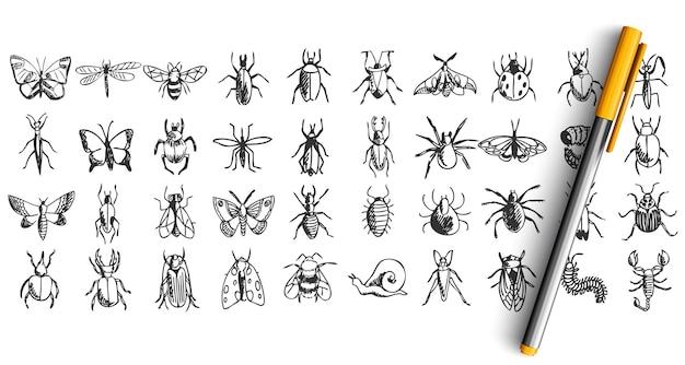 Ensemble d'insectes doodle isolé sur blanc