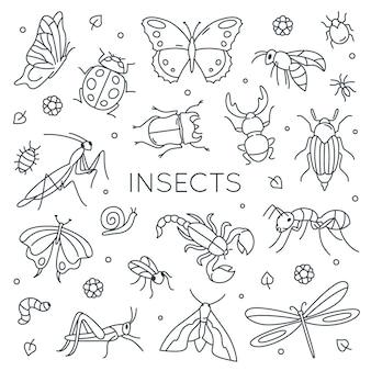 Ensemble d'insectes doodle.