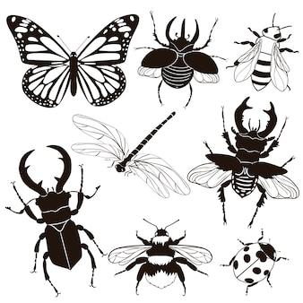 Ensemble d'insectes isolés sur fond blanc. .