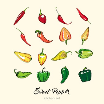 Ensemble d'isolat de poivre. illustration dessinée à la main paprika capsicum piment rouge piment rouge