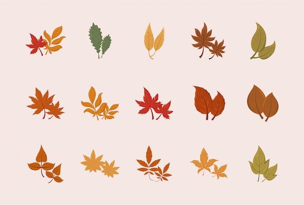 Ensemble isolé de feuilles d'automne vector design