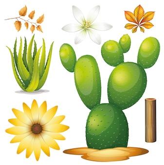 Ensemble de jardinage thème objets isolés