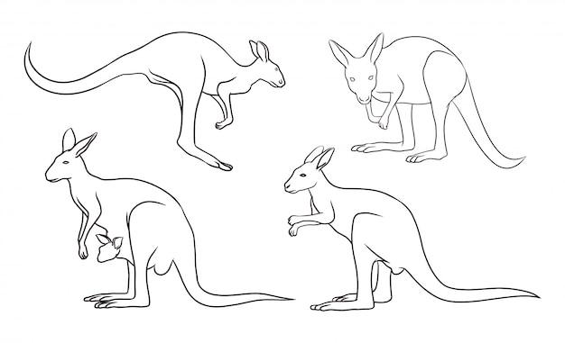 Ensemble de kangourou dessiné à la main