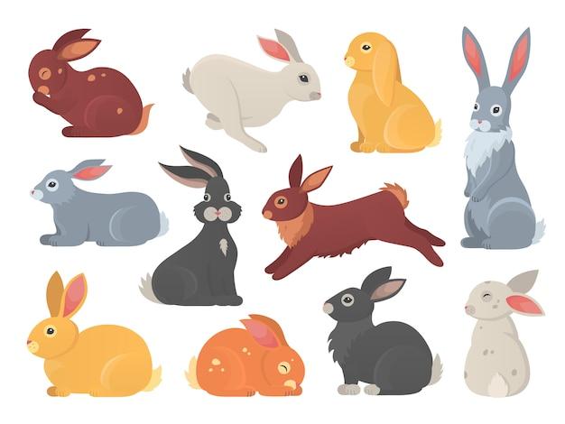 Ensemble de lapins mignons en style cartoon. bunny pet silhouette dans différentes poses. collection d'animaux colorés de lièvre et de lapin.