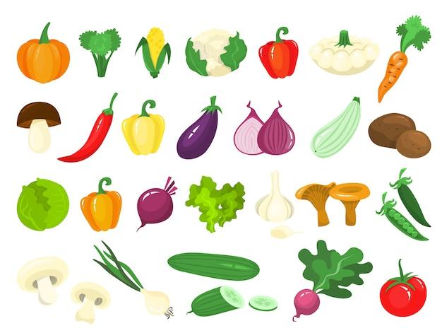 Ensemble de légumes. aliments biologiques frais. brocoli et carotte