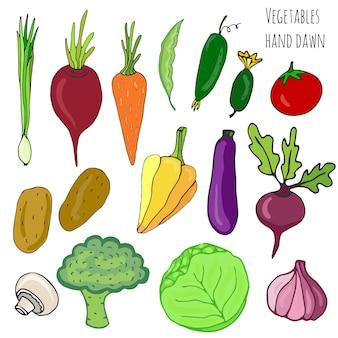 Ensemble de légumes dessinés à la main. illustration vectorielle de légumes isolés. collection stylisée de légumes pour le design.