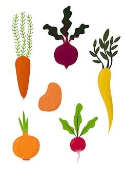 Ensemble de légumes frais dessinés à la main - betterave, pomme de terre, carotte, oignon, radis panais, modèle d'affiche