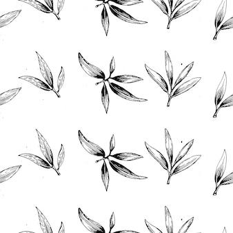 Ensemble de logo de branche d'olivier vecteur vert. signe d'huile d'olives. symbole de la paix signe religieux grec.
