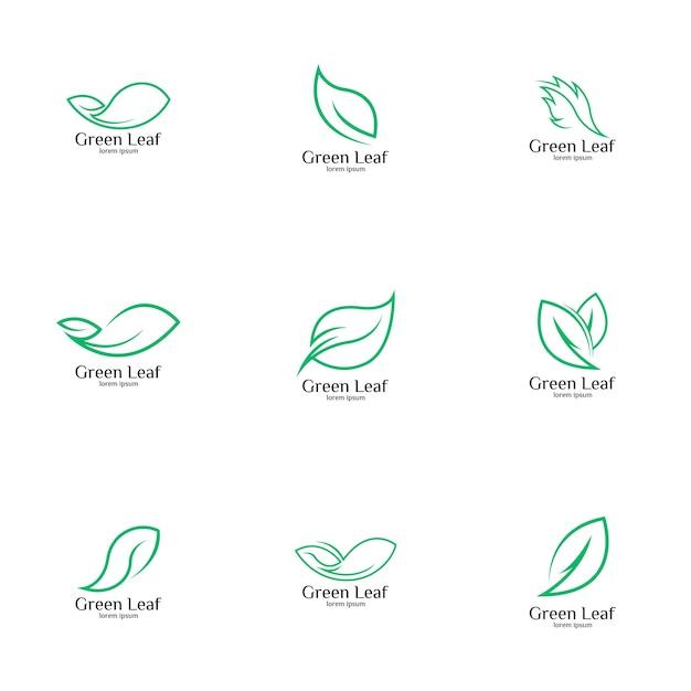 Ensemble de logo de feuille verte