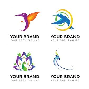 Ensemble de logo de marque oiseau moderne