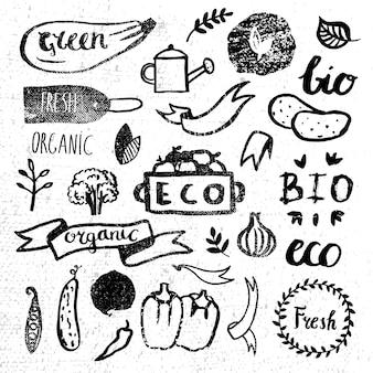 Ensemble de logotypes d'encre. insignes, étiquettes feuilles, rubans, éléments végétaux laurier. modèle naturel écologique bio, bio écologie.peinture dessin à la main.vintage, noir et blanc