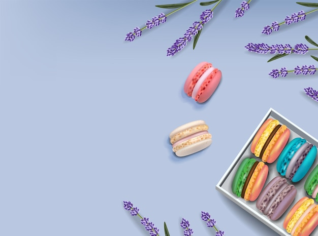 Ensemble de macarons et lavande vector réaliste. illustrations détaillées en 3d