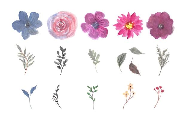 Ensemble de magnifique collection individuelle de fleurs et de feuilles à l'aquarelle