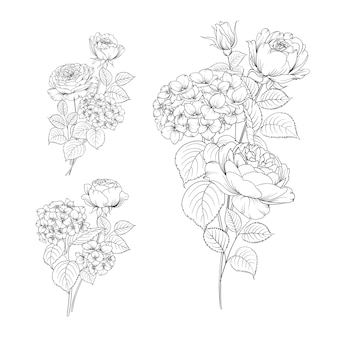 Ensemble de main dessin hortensia et rose.