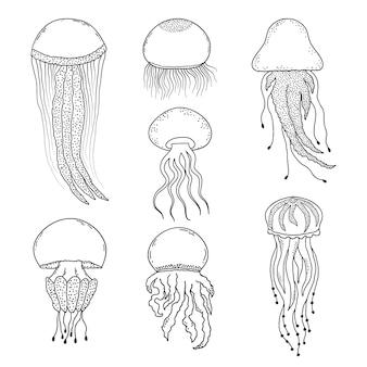 Ensemble de méduses dessinés à la main dans un style doodle sur fond blanc