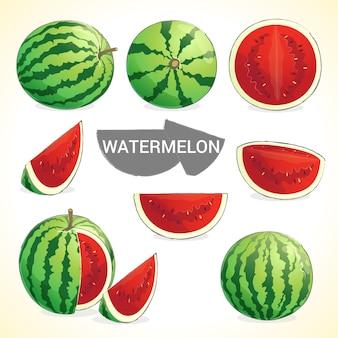 Ensemble de melon d'eau au format vectoriel de différents styles