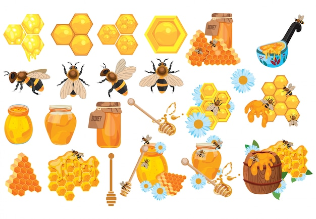 Ensemble de miel. collection d'apiculture. ensemble de rucher de dessin animé.illustration de ruche.
