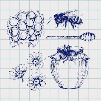 Ensemble de miel de vecteur. illustration vintage dessinée à la main. aliments biologiques gravés