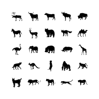 Un ensemble de modèles d'animaux sauvages. icônes noires isolées