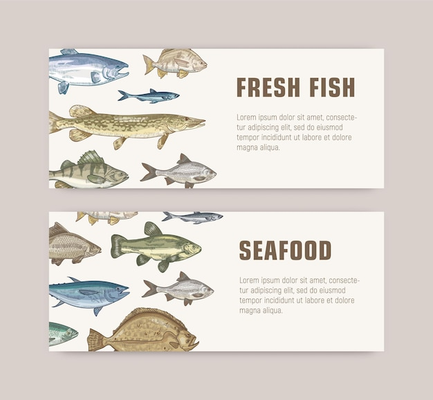 Ensemble de modèles de bannières web avec des poissons vivant dans la mer, l'océan ou les étangs d'eau douce et place pour le texte