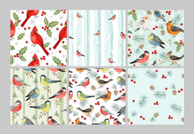 Ensemble de modèles sans couture d'oiseaux d'hiver. illustrations de dessins animés d'oiseaux chanteurs de la saison froide. cardinal rouge, symbole de noël avec des feuilles et des baies de gui. conception de papier d'emballage de temps de noël décoratif.