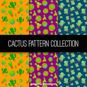 Ensemble de motifs colorés avec des cactus