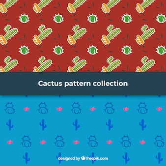 Ensemble de motifs décoratifs de cactus