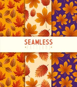 Ensemble de motifs de feuilles