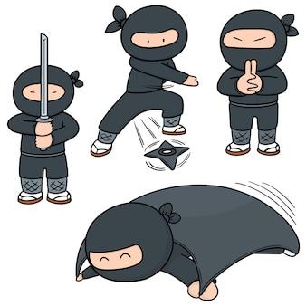 Ensemble de ninja