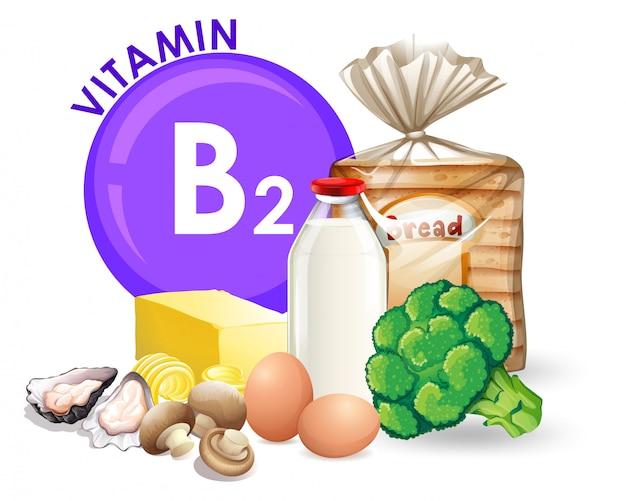 Un ensemble de nourriture de vitamine b2