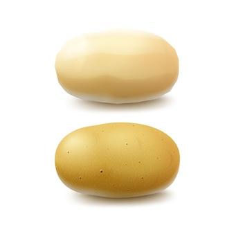 Ensemble de nouvelles pommes de terre entières crues jaunes pelées et non pelées close up isolated on white