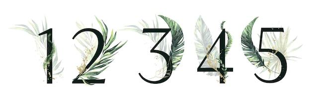 Ensemble de numéros floraux verts et or tropicaux