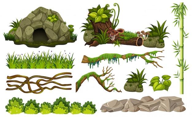 Ensemble d'objets de la jungle