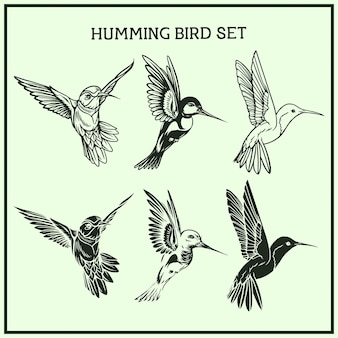 Ensemble d'oiseaux bourdonnant