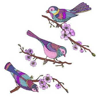 Ensemble d'oiseaux ornés dessinés à la main sur des branches de sakura avec des fleurs.