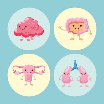 Ensemble d'organes de dessin animé