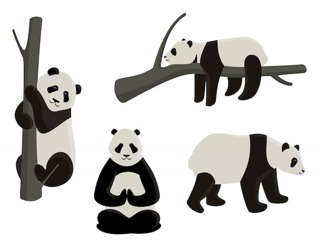 Ensemble de pandas dans des poses différentes. illustrations de style dessin animé isolées sur fond blanc.