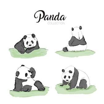 Ensemble de pandas