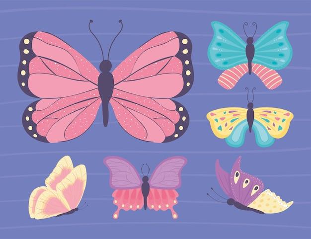 Ensemble de papillon différent