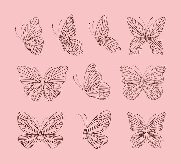 Ensemble de papillons mignons