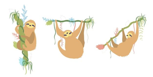 Ensemble de paresseux de caractère mignon. dessin animé isolé bébé escalade illustration vectorielle plane de paresseux.