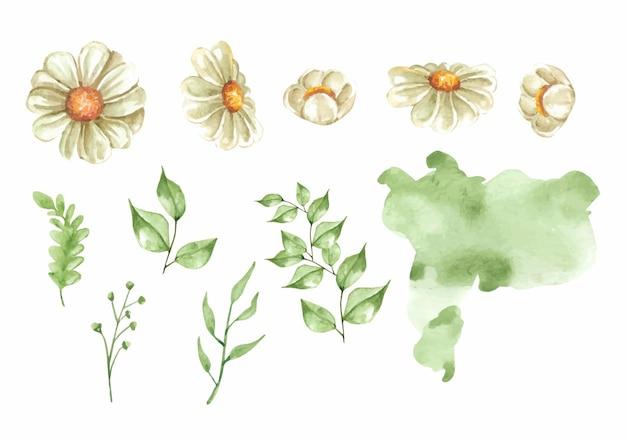 Ensemble de peinture de fleurs et de feuilles de fleurs